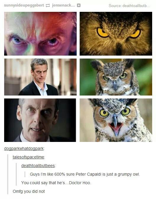Doctor Hoo. This is great. It makes me really happy and I'm not sure why