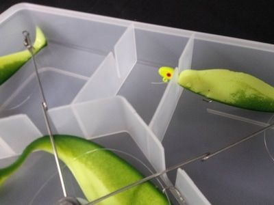 """Umbrella rig storage box for rigs up to 20"""". These boxes are stackable and keep your striper rigs tangle-free. Made in USA."""