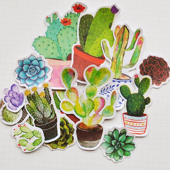 Succulent stickers planner stickers erin condren cactus stickers die cut watercolor stickers