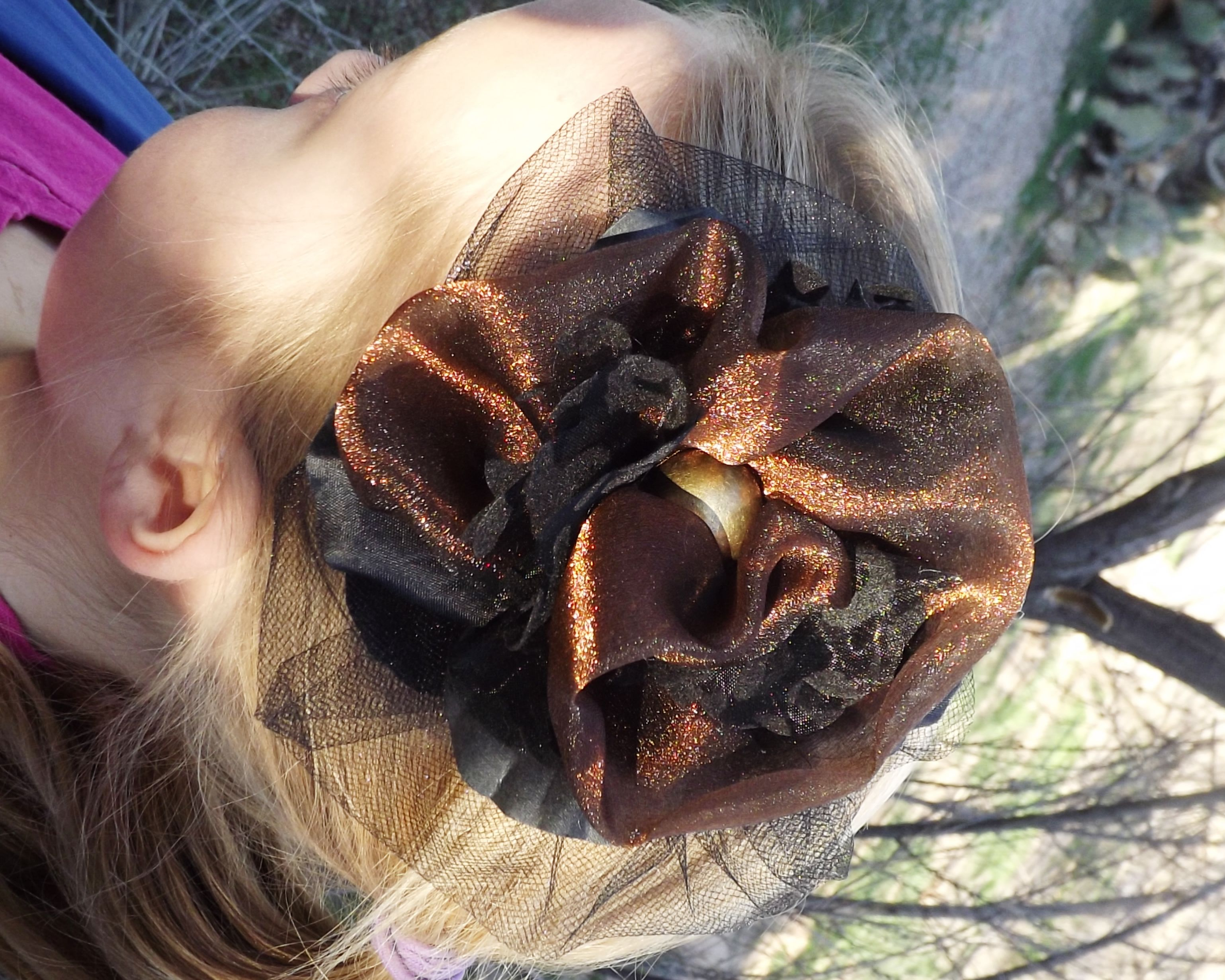 Bronze and black hair clip
