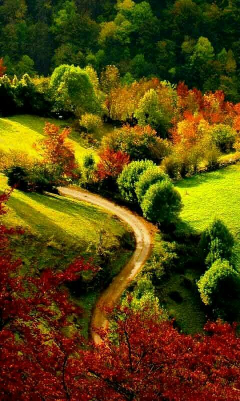 منظر طبيعي وطريق Autumn Scenery Autumn Landscape Beautiful Landscapes