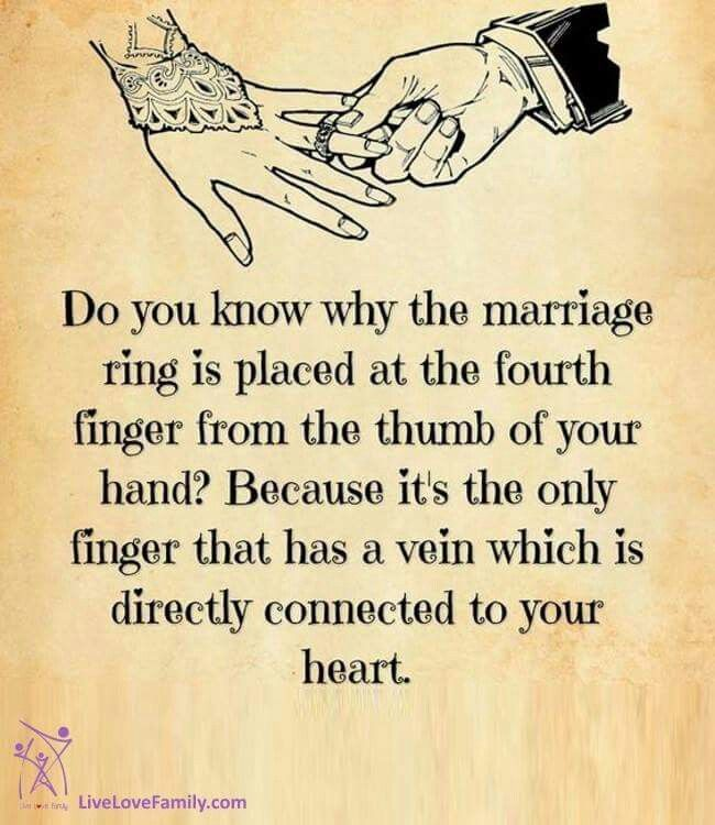Love To Marriage Quotes: Pin By ~Pin Faves~ On Marriage Quotes
