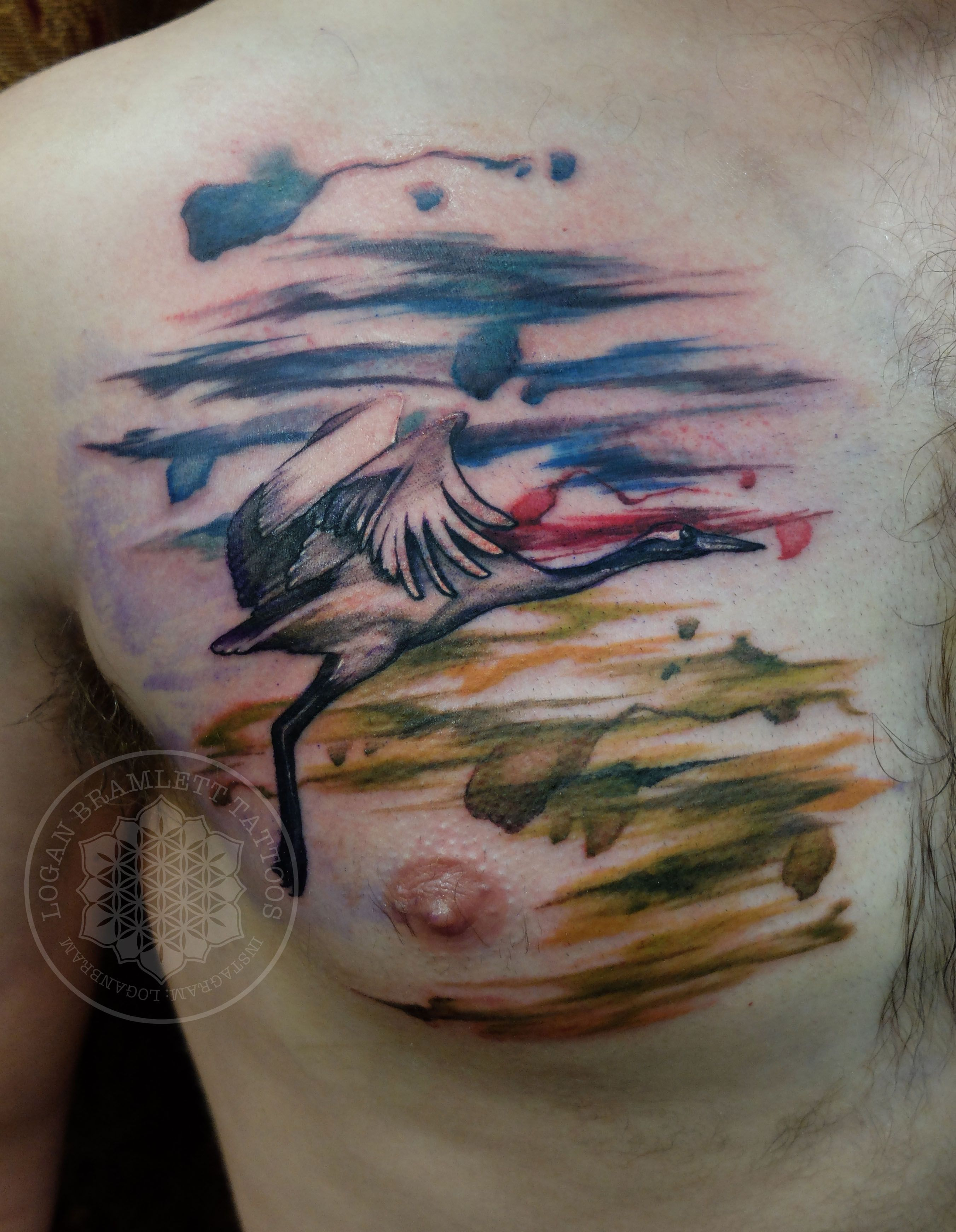 Watercolor Red Crowned Crane Tattoo By Logan Bramlett Follow Me On