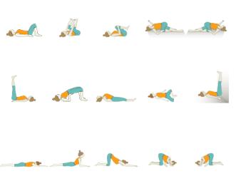 pin on restorative yoga sequences