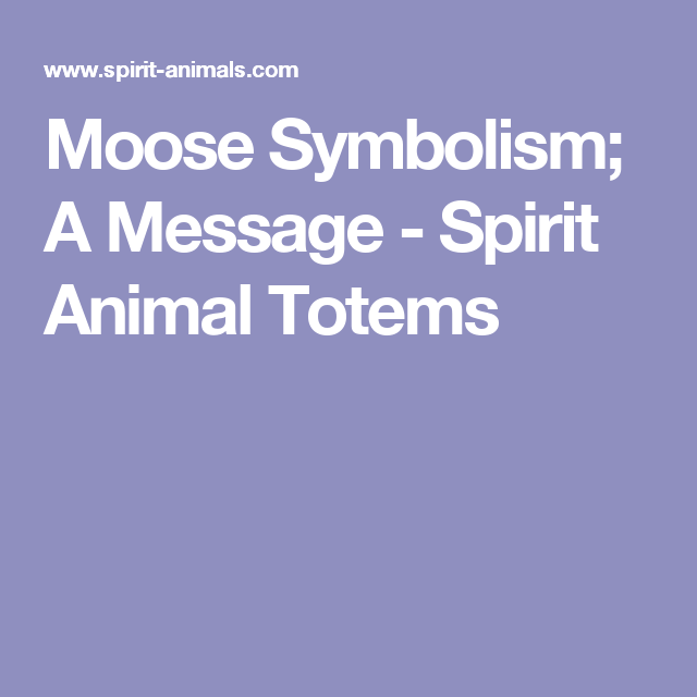 Moose Symbolism A Message Spirit Animal Totems Ways Of The Olde