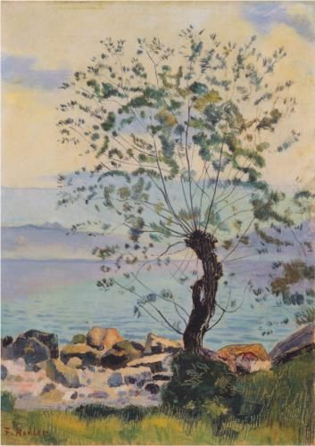 Willow tree by the lake - Ferdinand Hodler