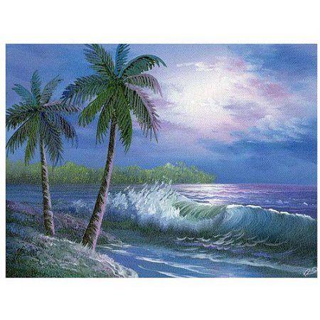 Trademark Fine Art Moonlight in Key Largo Canvas Art, Size: 35 x 47, Multicolor