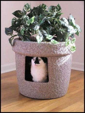 Sierra Rock Stone Coat Decor Hidden Litter Cat Box With Ivy Plant