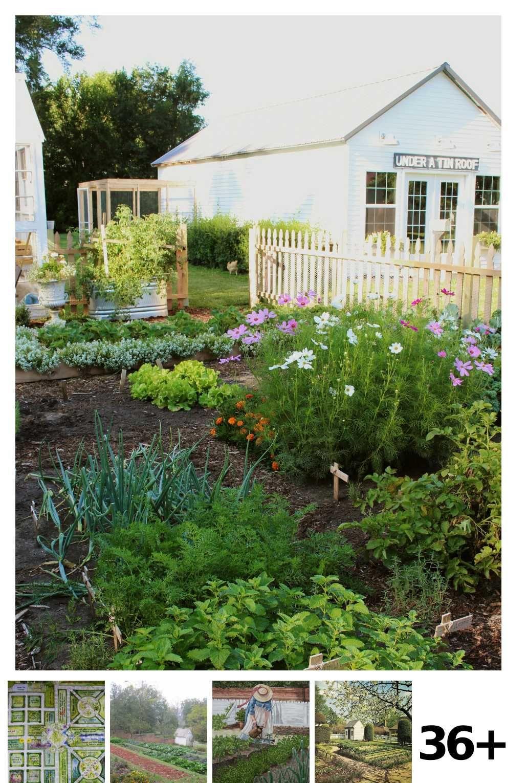 36 Colonial Kitchen Garden Ideas In 2020 Minimalist Garden Kitchen Garden Garden Site