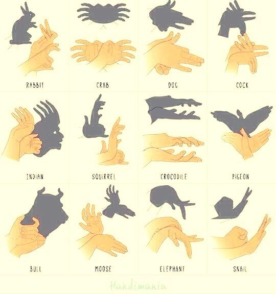 how to do different animal hand shadows my style pinterest