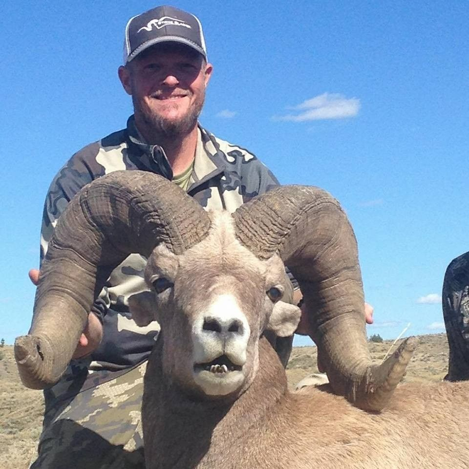 Trophy Big Horn Sheep hunts Whitetail deer hunting, Mule