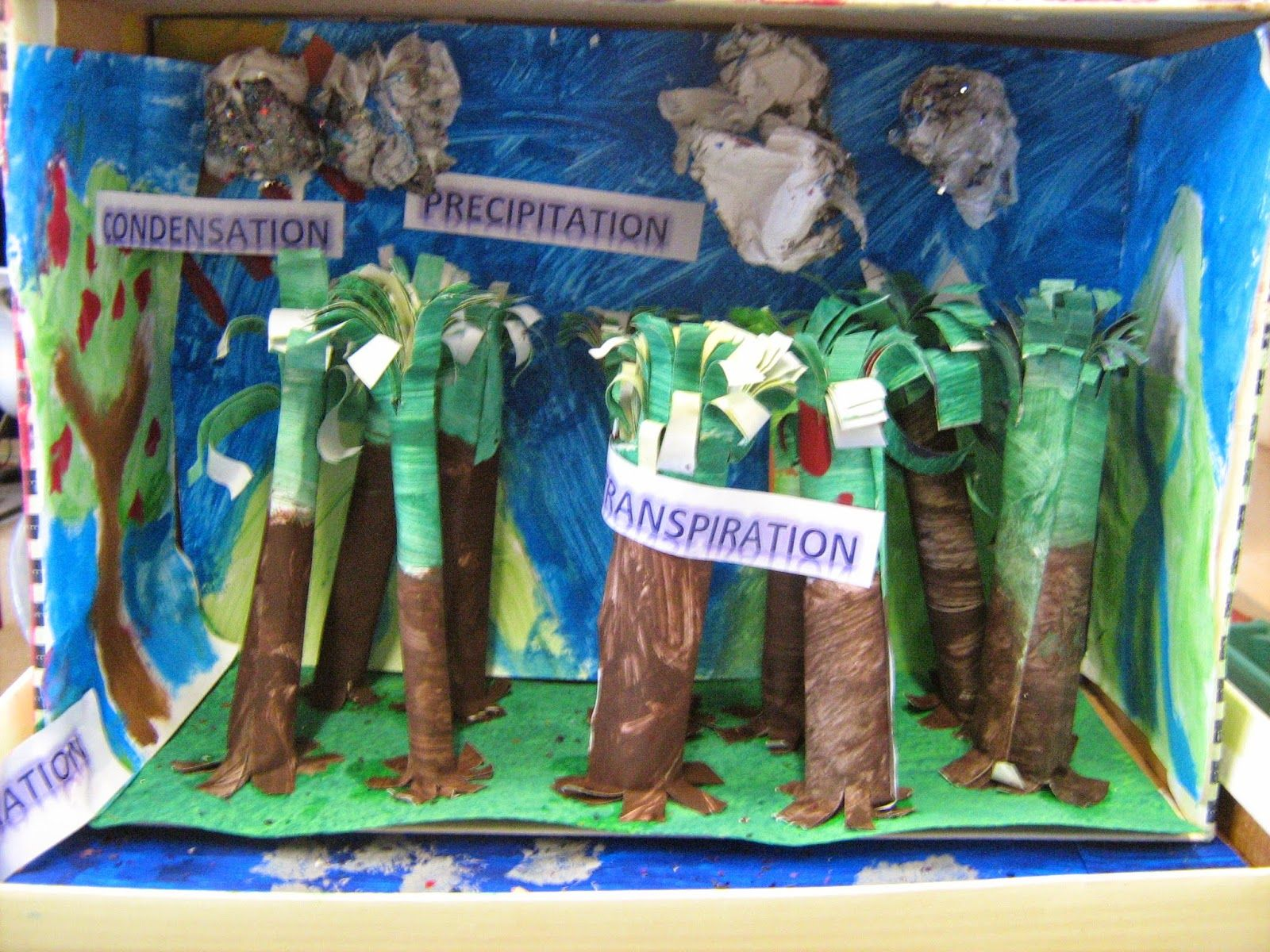 3d Diorama Of The Water Cycle In A Rainforest
