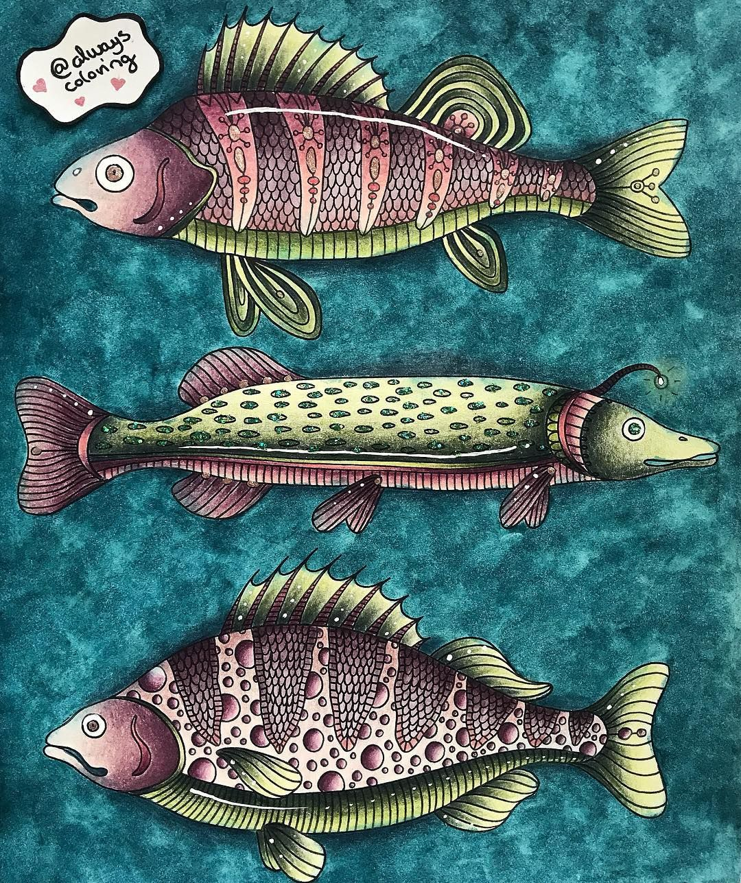 437 Likes 36 Comments Katrine Alwayscoloring On Instagram This Is On Youtube I Just Love How My Fish Turned Out They Kleurboek Kleuren Kleurplaten