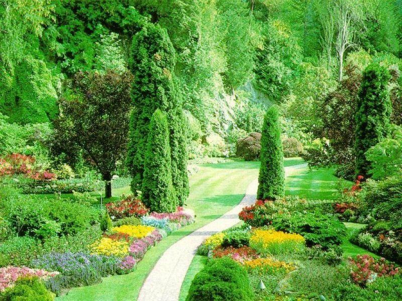 ... Backyard Flower Gardens » beautiful-backyard-flower-gardens-4