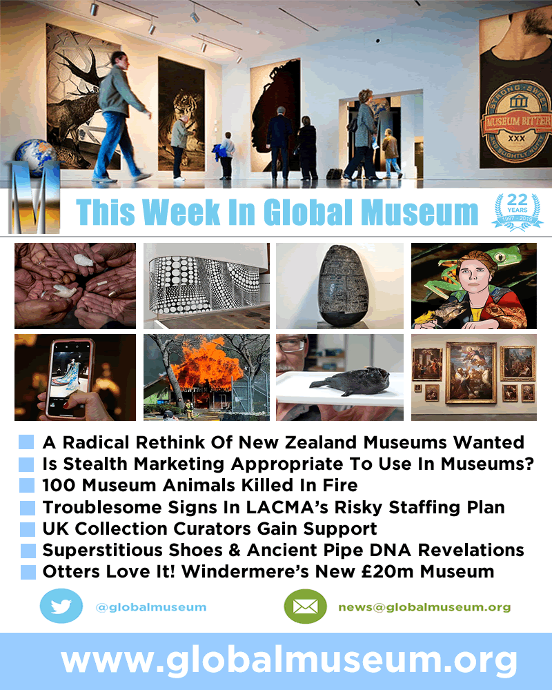A Radical Rethink Of Nz Museums 100 Museum Animals Killed