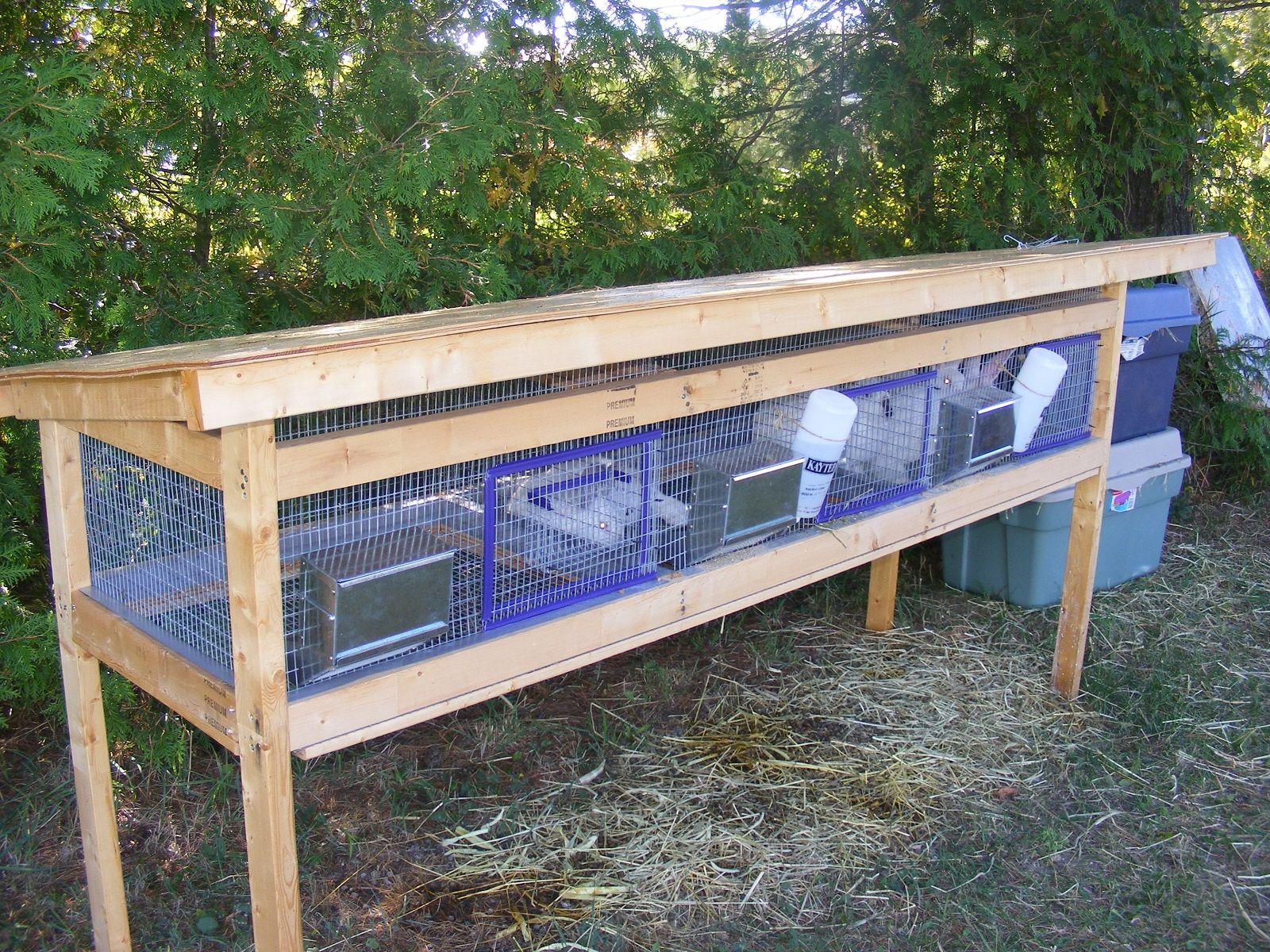 Homemade Rabbit Cages Rabbit Cages Rabbit Cages Outdoor Rabbit Hutches