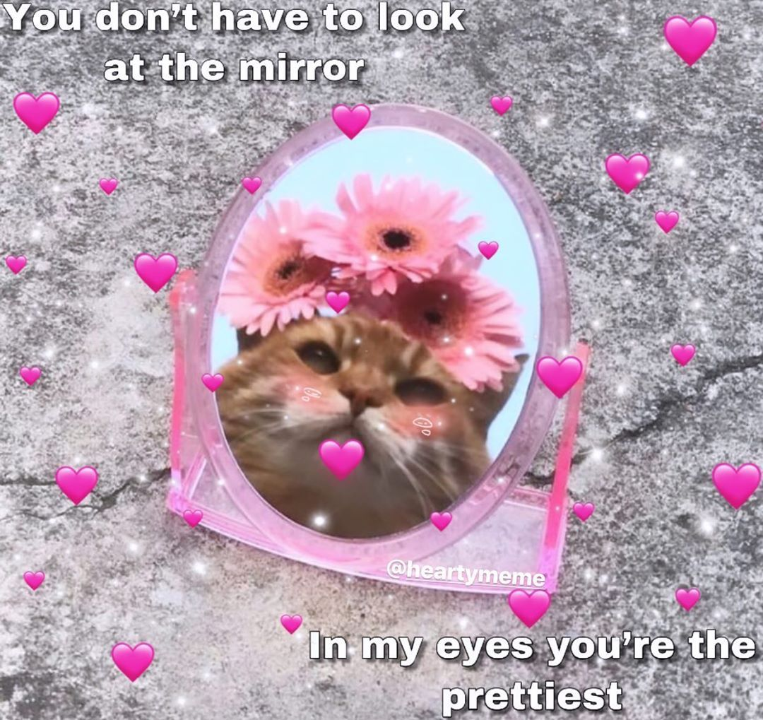 Goodmorning Send Tag This To Someone You Love Loveandaffectionmemes Memes Lovememe Wholesomelovememes Wholesomeed Love Memes Wholesome Memes Memes