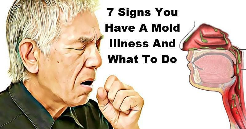 Mold Can Cause Serious Diseases If It Is Present In Your House Or Office And You Are At Risk For Ociated Illnesses Continuance We Going