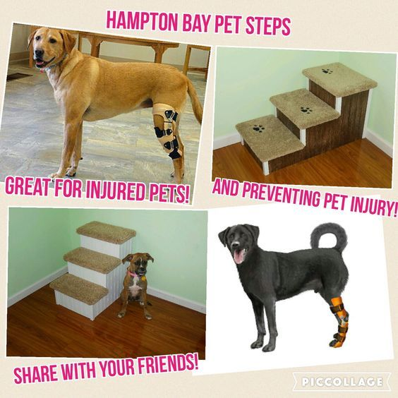 Dog Steps Wood Pet Stairs For Pets 2 80 Lbs Great For High Beds 24 H X 17 W X 24 D Made In Usa Hampton Bay Pet Steps Pet Steps Pet Stairs Dog Stairs