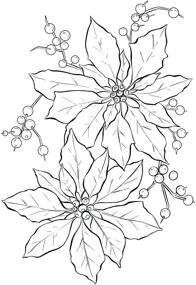 Poinsettias Drawing (17) Christmas coloring pages