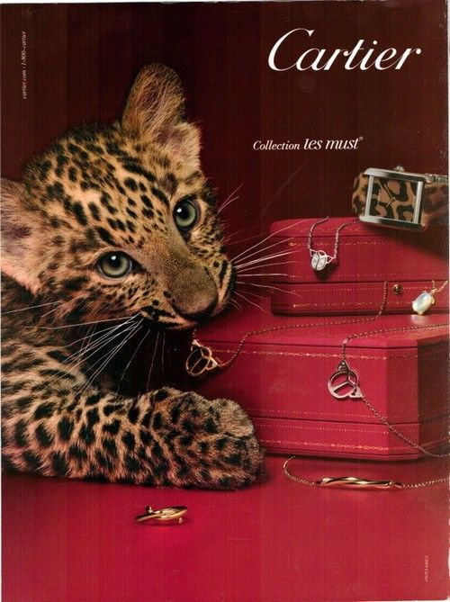 Wild 4 Cartier Jewelry Ads Animal Print Fashion Cute