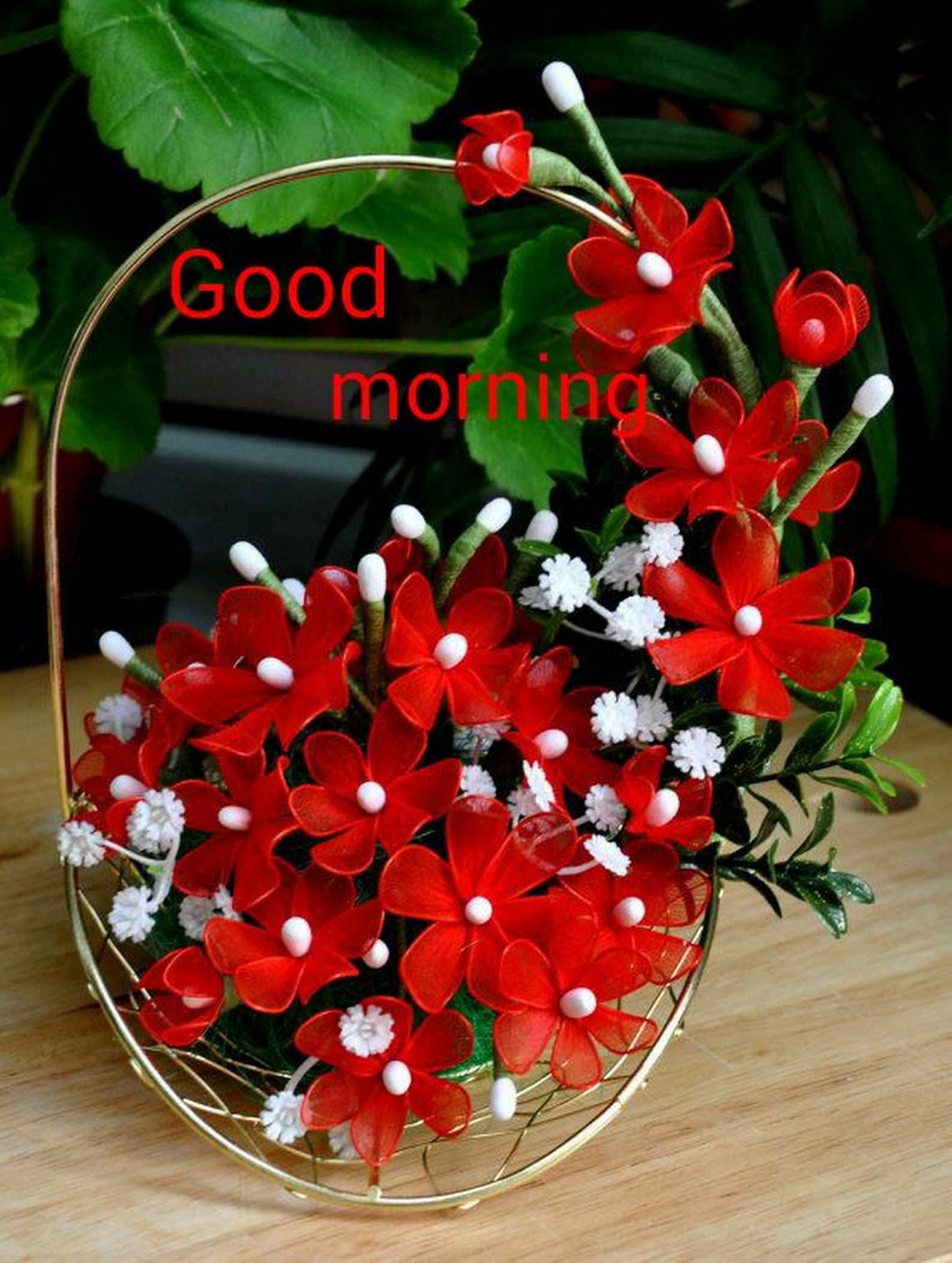 Good Morning Friends Have A Nice Day Krishna