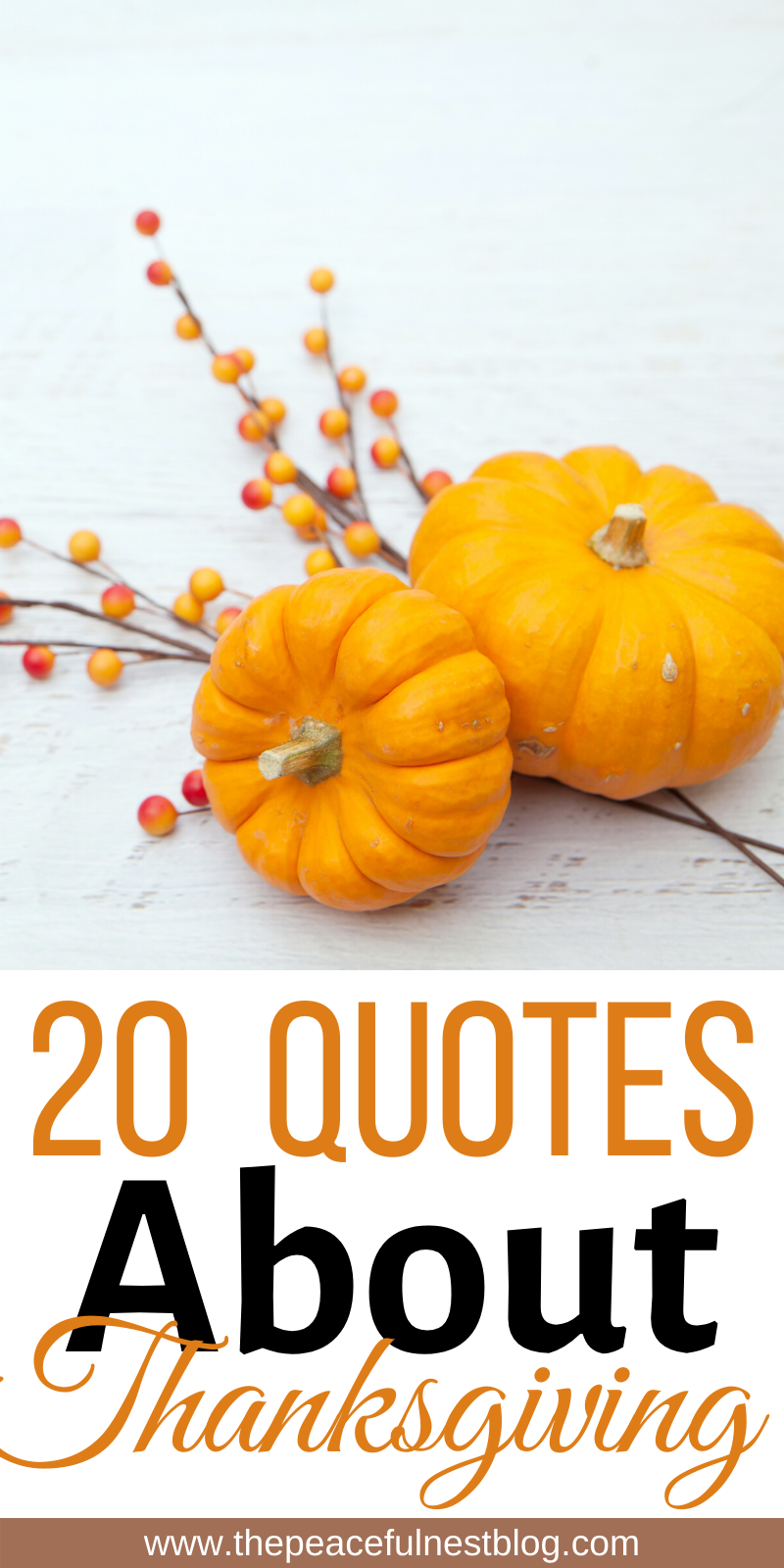 20 Quotes About Thanksgiving In 2020 Thankful Quotes Thanksgiving Quotes Holiday Quotes