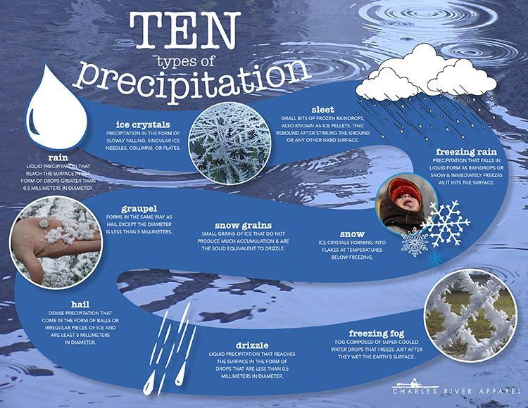 Charles River Apparel Types Of Precipitation Precipitation Water Cycle Lessons