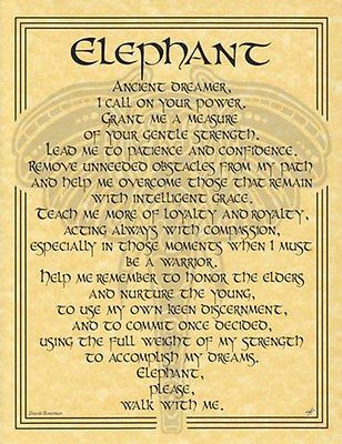 Animal Book Of Shadows Page Wicca Witchcraft Elephant Prayer