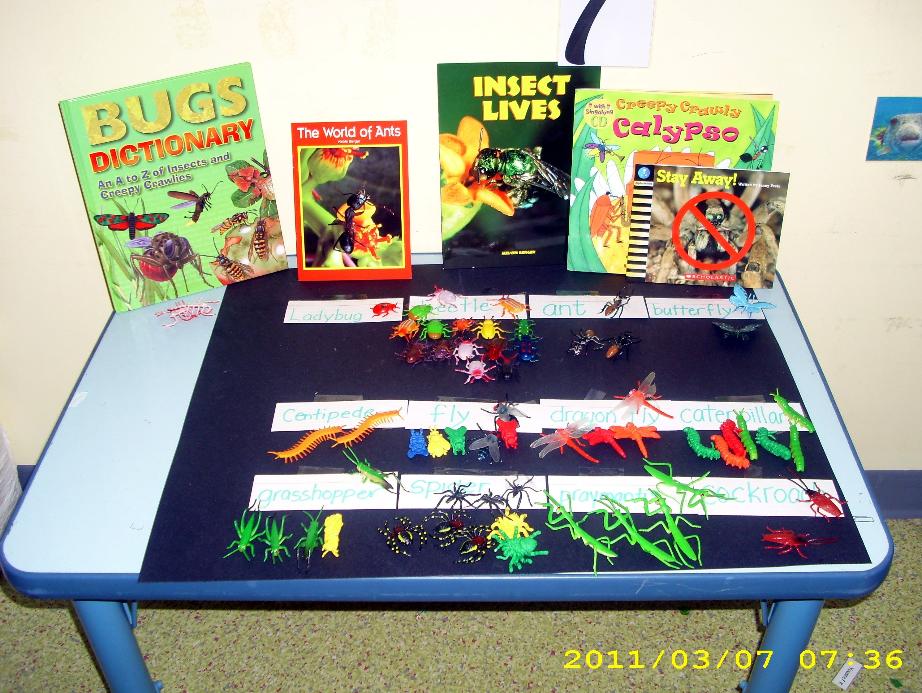 Insects Theme Science Corner A Simple And Easy Activity For Preschoolers And Junior
