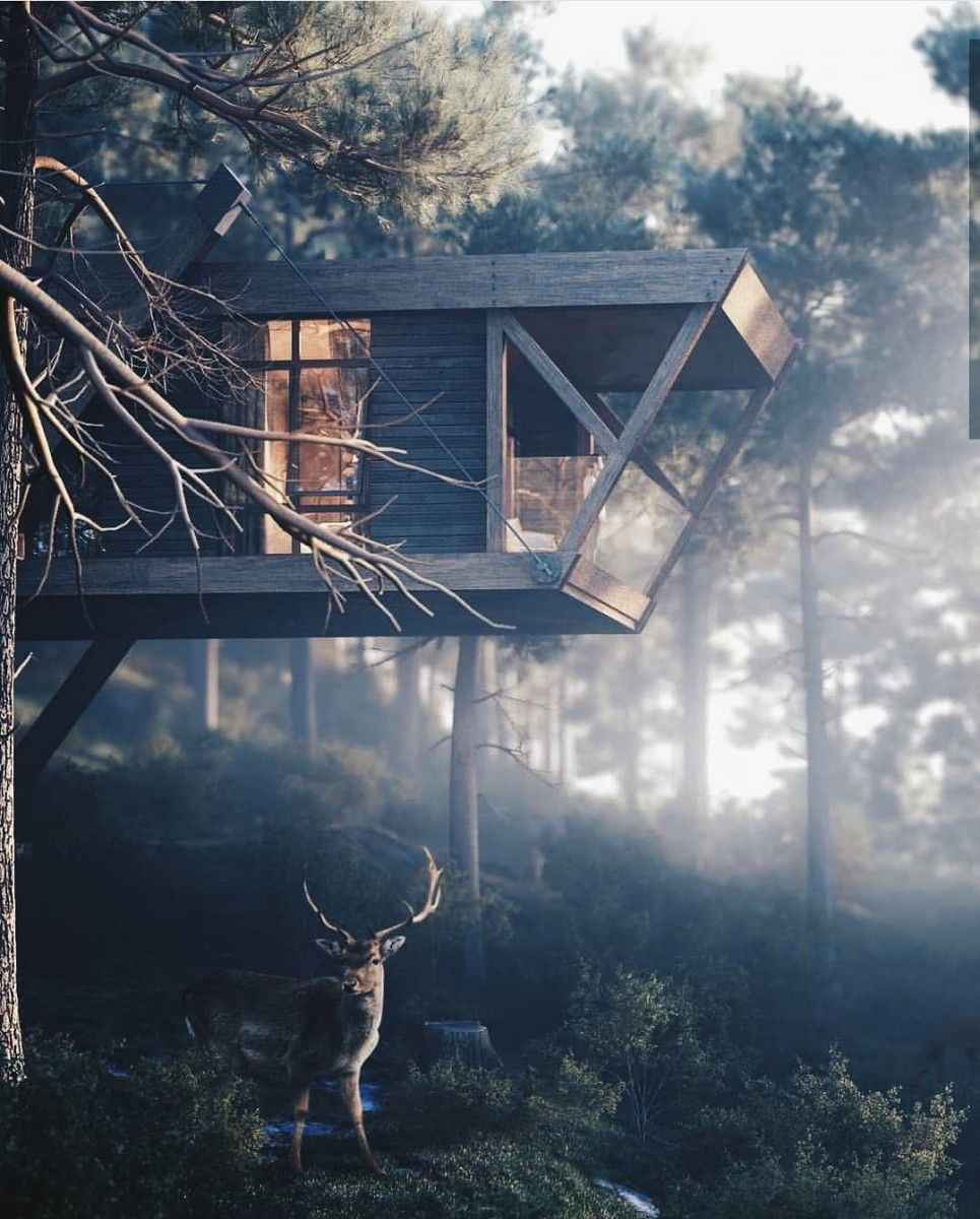 Home Design Ideas Bangalore: Forest Design, Architecture