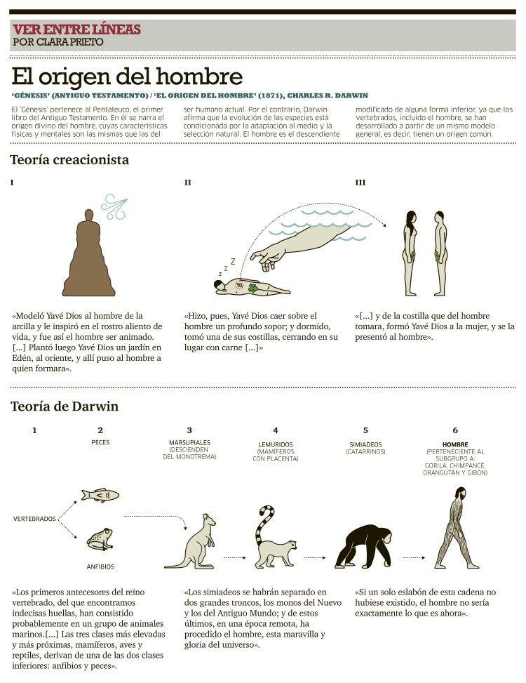 Origen Del Hombre Biblia Y Darwin Human History Historia