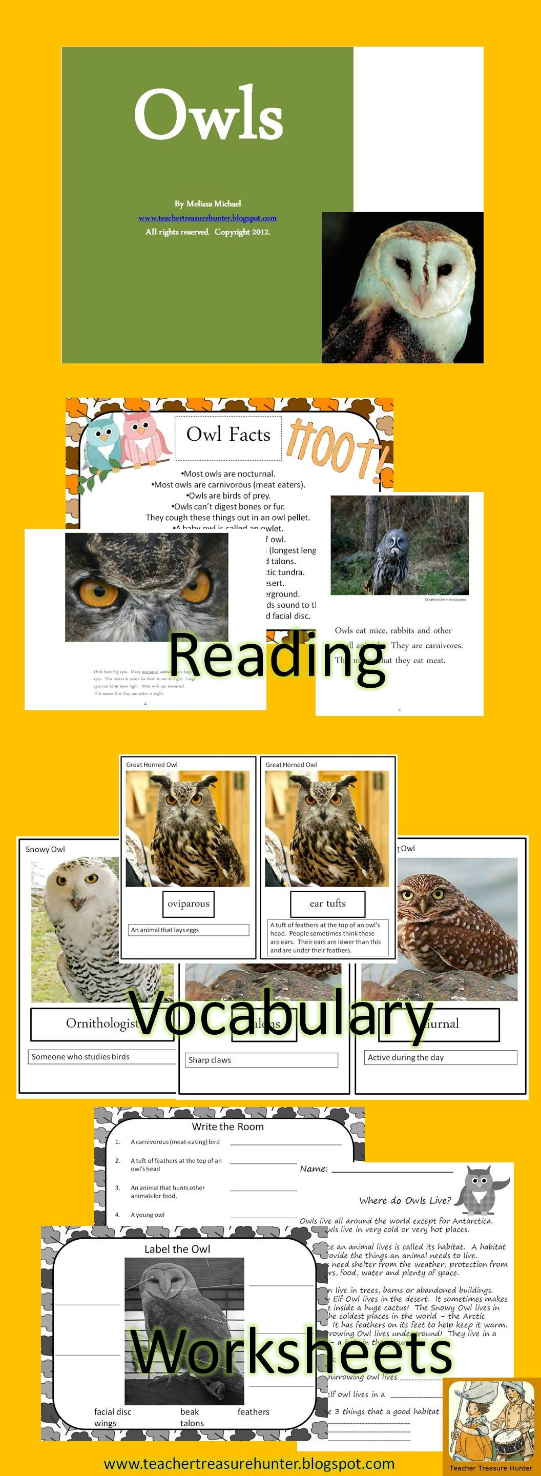 Owls Science Amp Literacy Owl Activity Unit