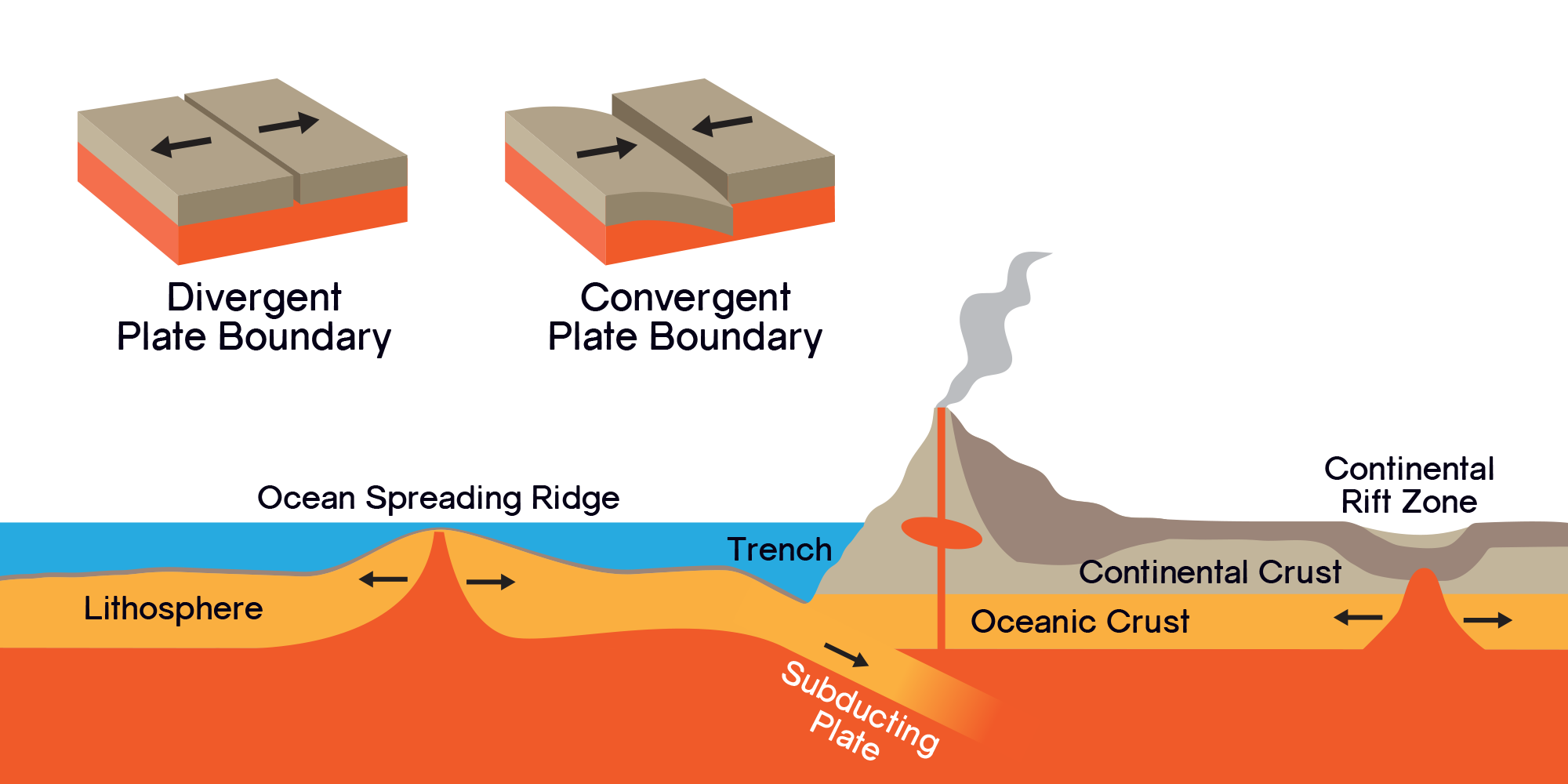 Continental Crust On Top Of Oceanic Crust With The Mantle Below New Crust Forms At Divergent Plate Boundaries Plate Boundaries Plate Tectonics Mid Ocean Ridge