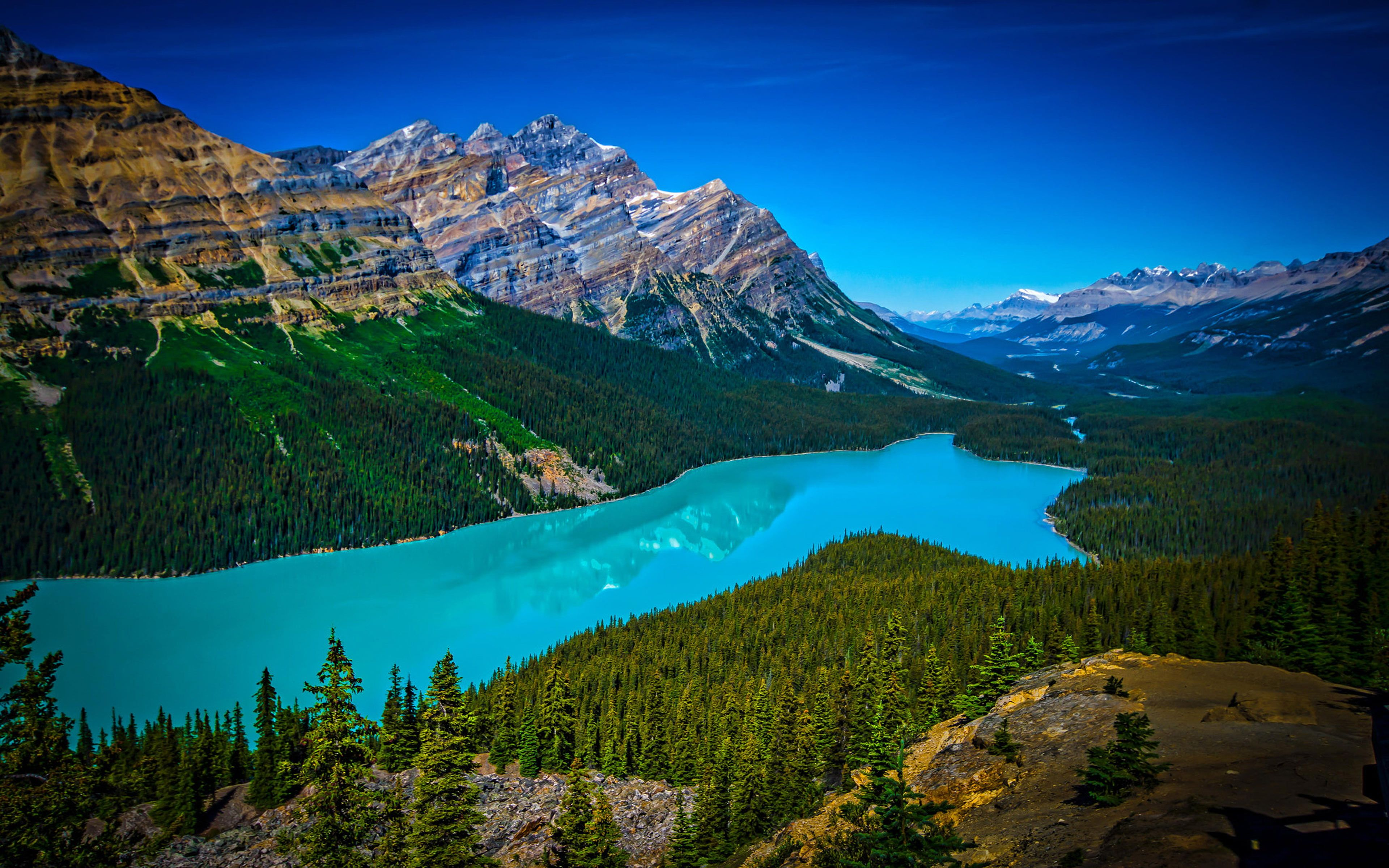 Turquoise Peyto Lake In Banff National Park In Canada At An Altitude Of 1860 M Length 2 8 Km Hd Tv Wallpaper For Deskto Banff National Park National Parks Lake