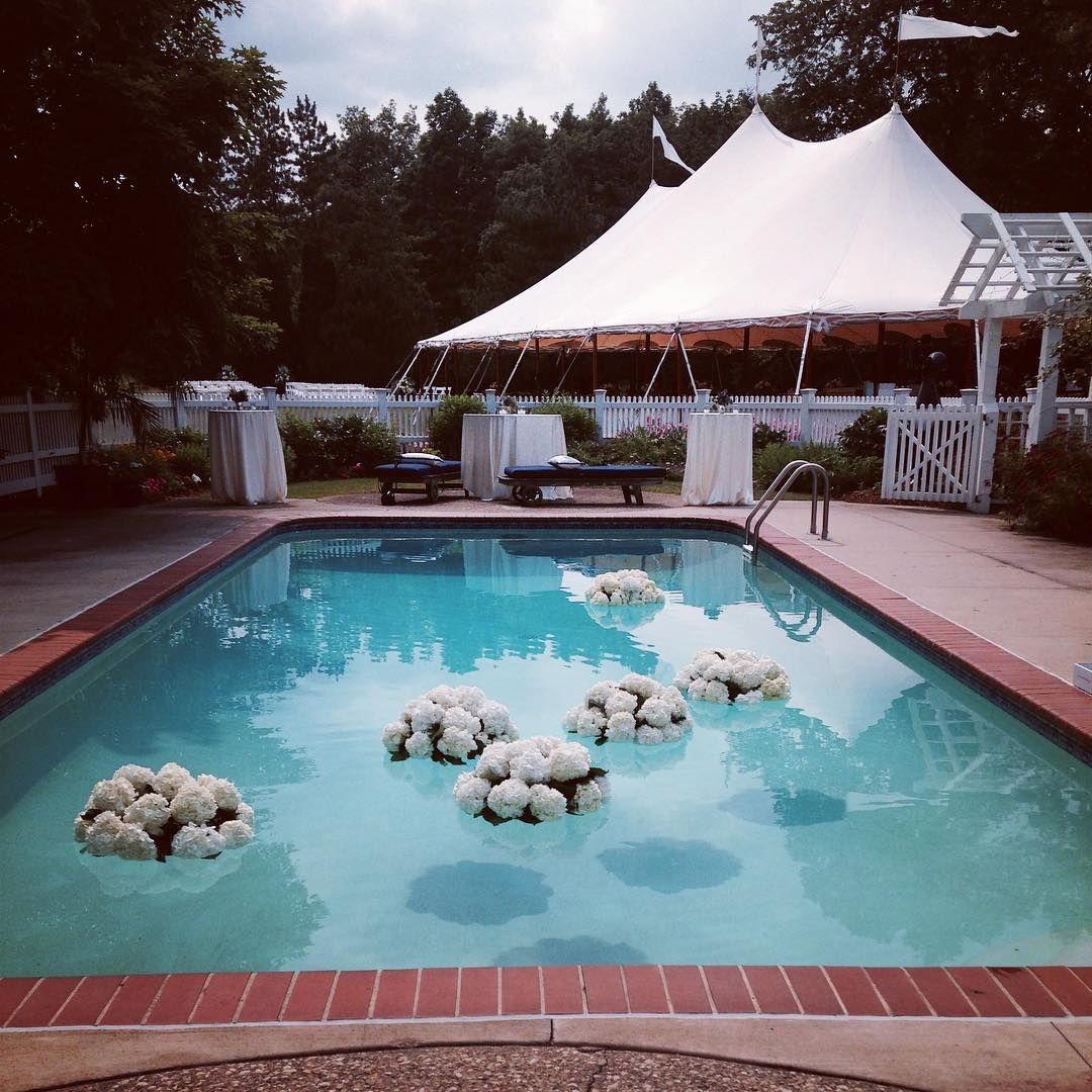 freshdesign — Floating pool hydrangeas for a backyard ...