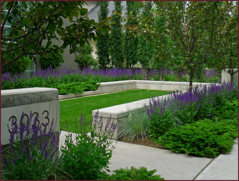 Rectangular design | Concrete garden, Garden design ... on Rectangular Backyard Design id=34296