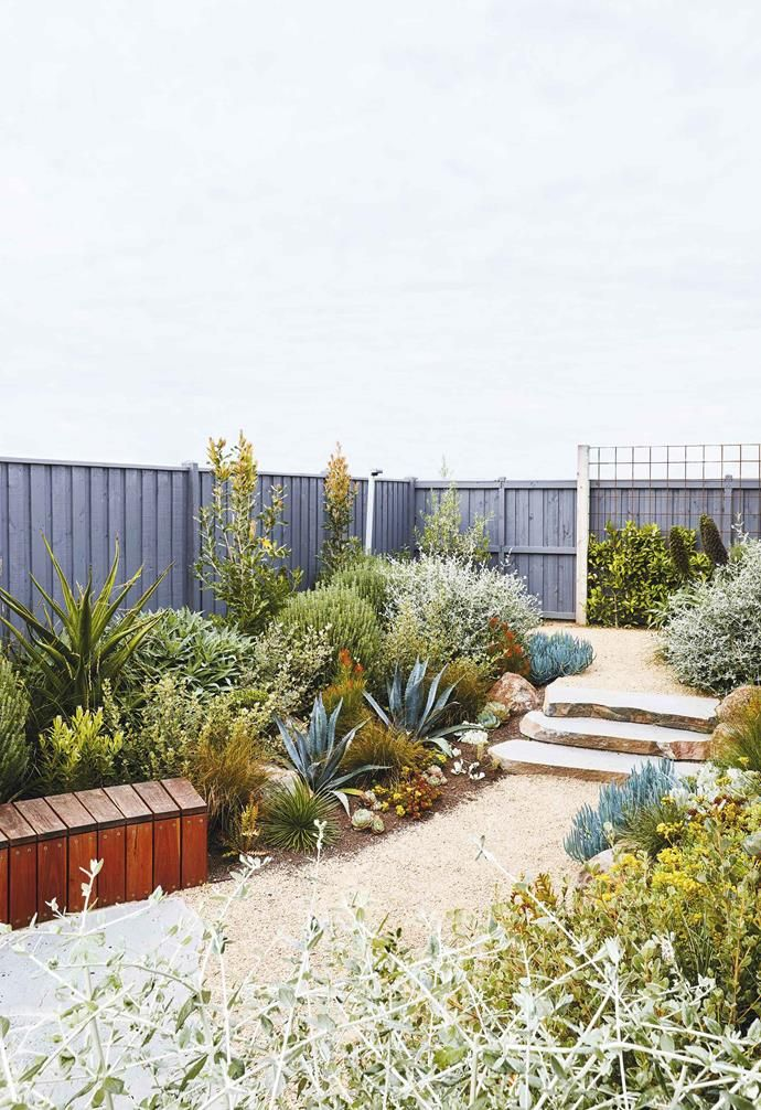 An Easy Care Coastal Garden In Torquay With Colourful Plants Coastal Gardens Native Garden Australian Garden