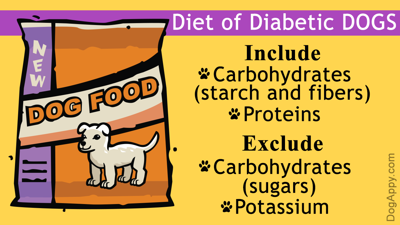 What Food Is Best Suited For Dogs Who Have Been Diagnosed With Diabetes Which Foods Should You Avoid Including In His Diet And Which Should Yo Diabetic Dog Diabetic Dog Food
