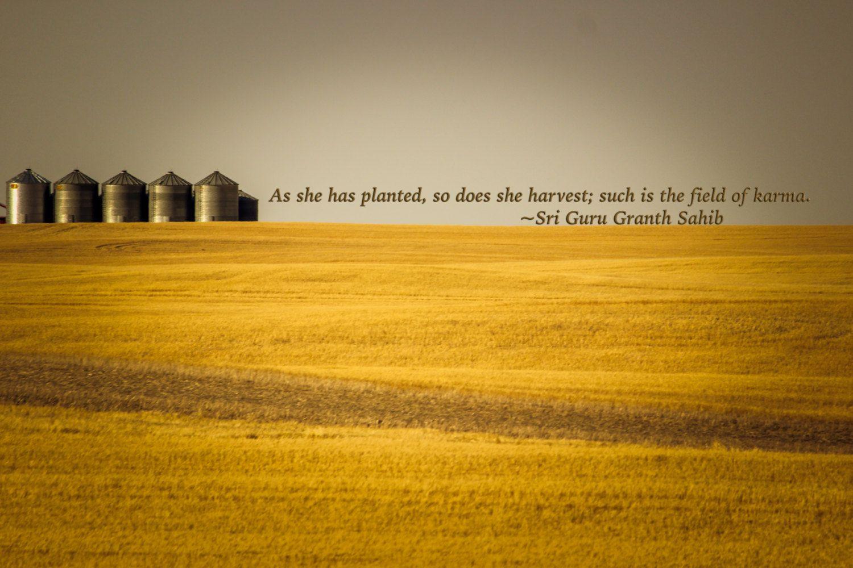 Karma, Farm, Minimalist, Inspiration, Midwest - Original Photograph #1825 by…