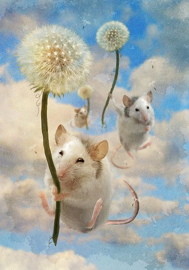 Mice riding dandelions