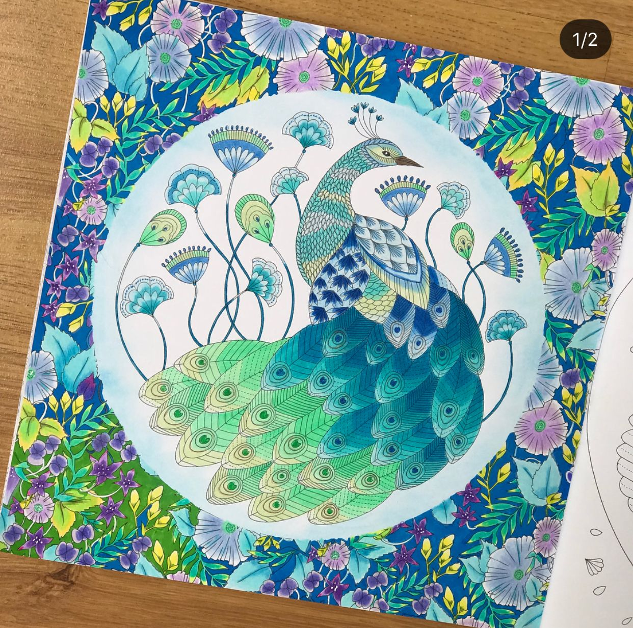 Millie Marotta Coloring Book Colored By Coloring Book Artist A To Millie Marotta Coloring Book Animal Kingdom Colouring Book Millie Marotta Tropical Wonderland