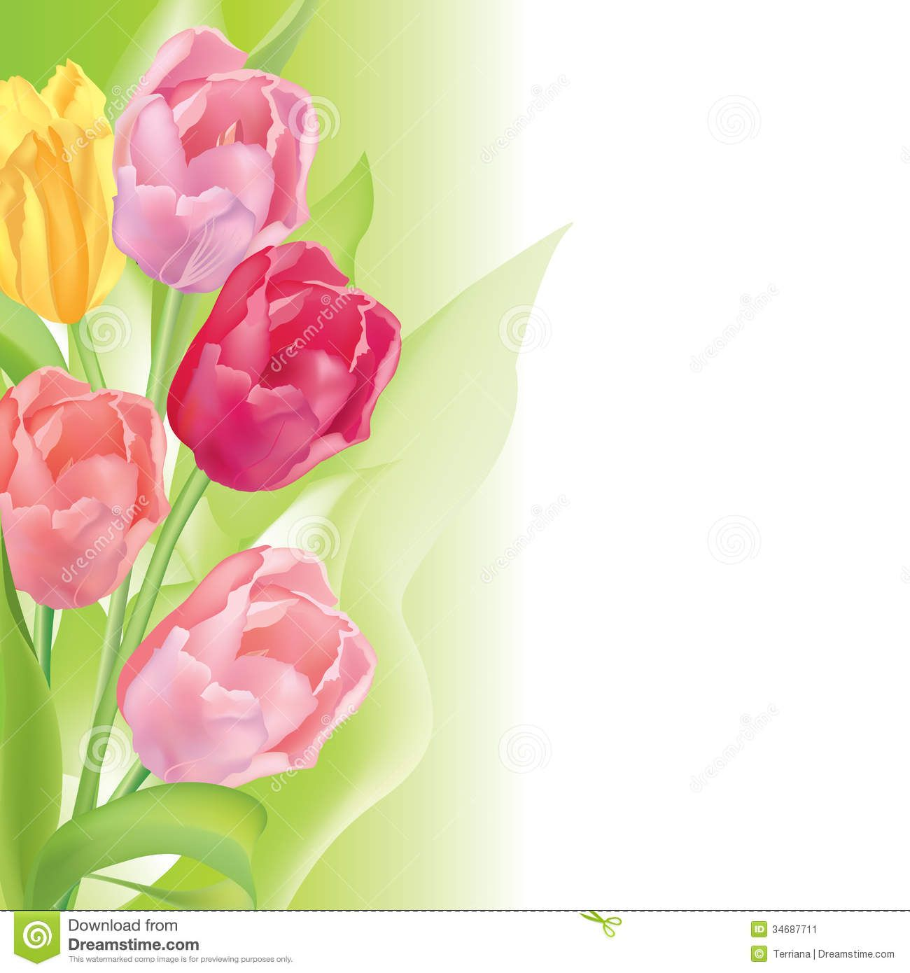 Flower Tulip Background 03 Paper Floral Tulips Art Flower Frame