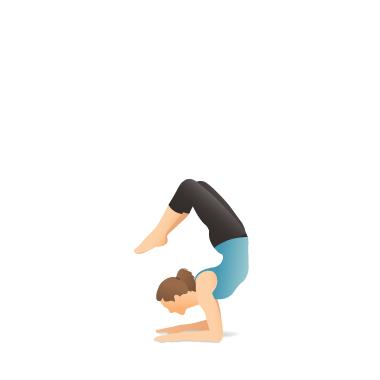 Yoga Pose Scorpion Yoga Poses Yoga Information Yoga