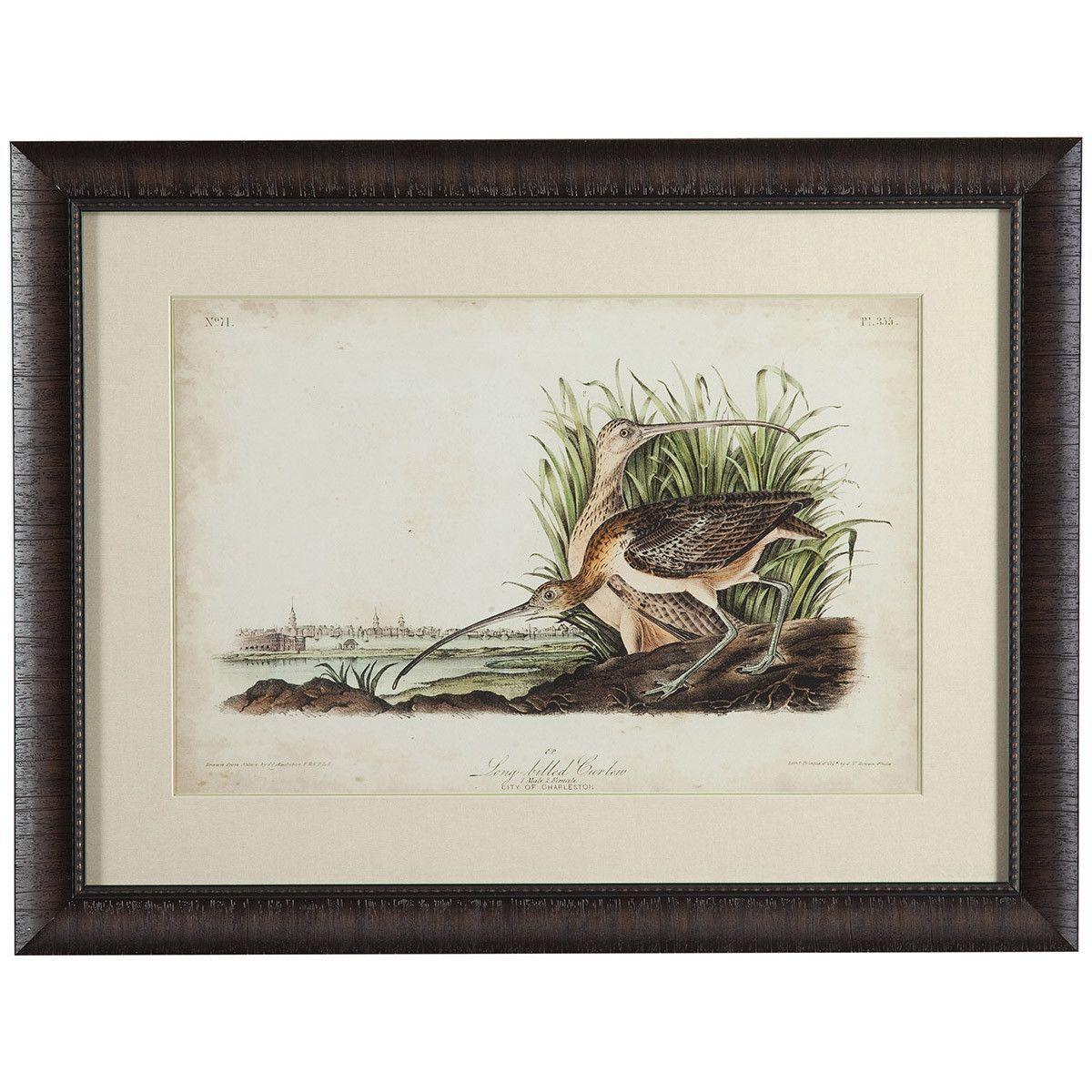 Bassett Mirror Old World Long-billed Curlew Art