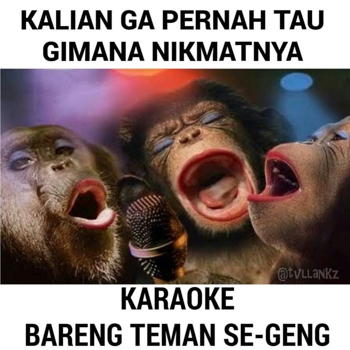 Kumpulan Gambar Meme Ic Indonesia Yang Terdapat Di