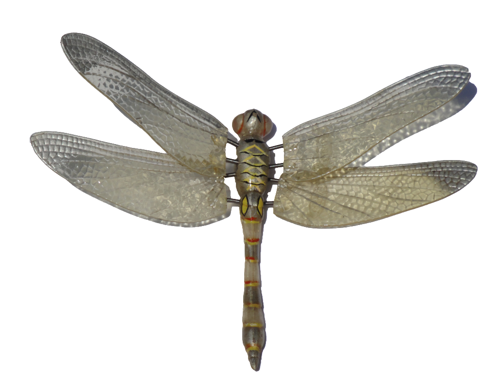 Dragonfly Png Image Wings Png Dragonfly Wings Insects