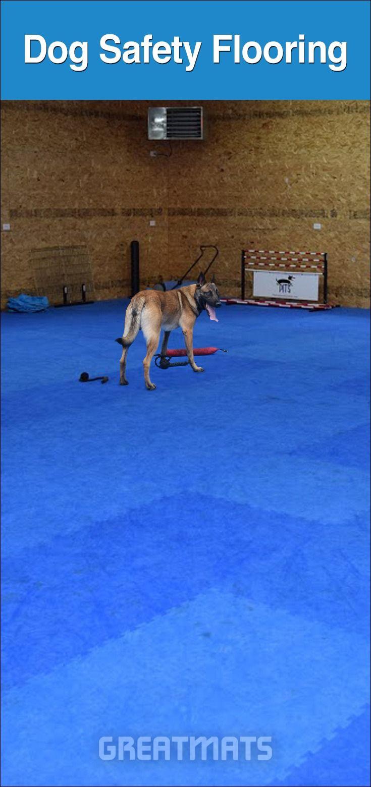 Home Dog Training Flooring Steve Powell Wheeler, WI