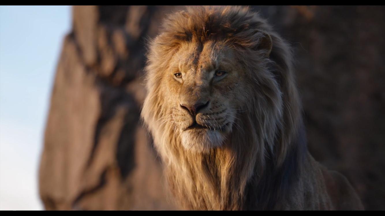 lion king 2019 stream # 5