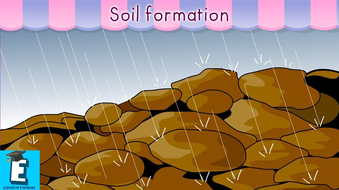Soil formation by educational program for kids for plants for Importance of soil for kids